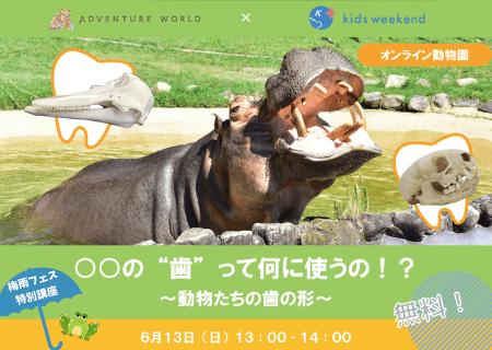 """〇〇の""""歯""""って何に使うの!?~動物たちの歯の形~"""