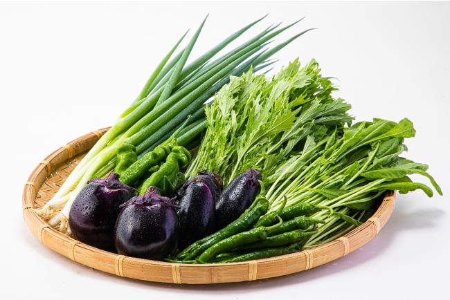 京野菜の魅力を探る!~見て、味わって、健康的に!~