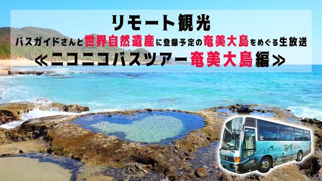【リモート観光】 バスガイドさんと世界自然遺産に登録予定の奄美大島をめぐるオンラインバスツアー