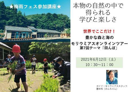 第7回豊かな森と海のモリウミアス生体験ツアー「田んぼ」