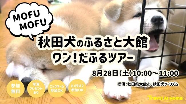 MOFU MOFU秋田犬のふるさと大館ワン!だふるツアー