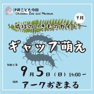 ムカデ・ヘビ 琉球のいきものガイド9月「ギャップ萌え」