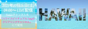 """【ハワイからLIVE配信】""""ハワイの今""""を現地からLIVE配信"""